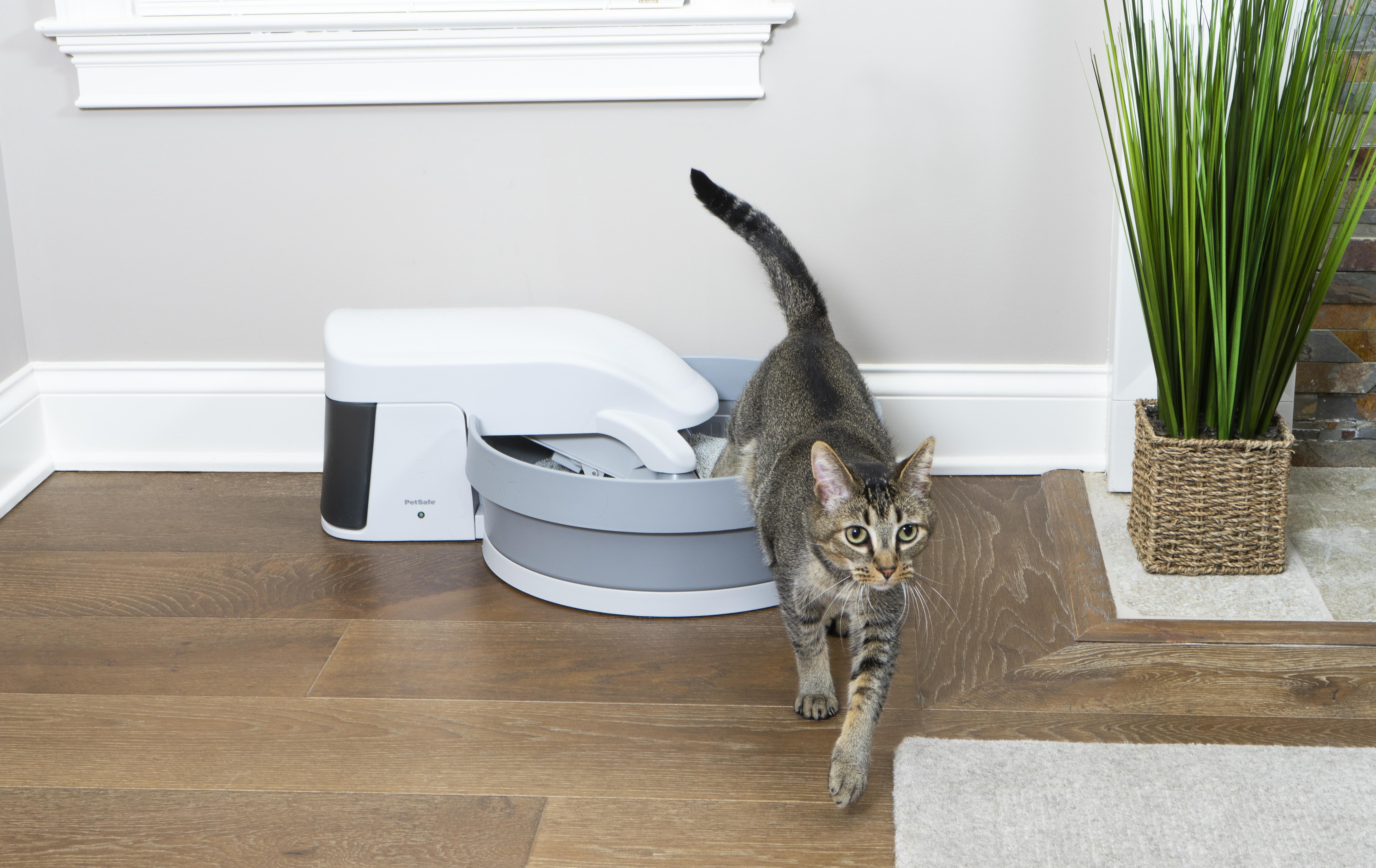 Avec PetSafe®, l'entretien du bac à litière des chats n'a jamais été aussi simple