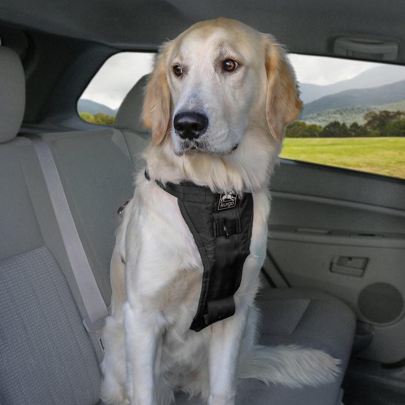 Kurgo® étend sa gamme de harnais avec le modèle Tru-Fit Smart Dog